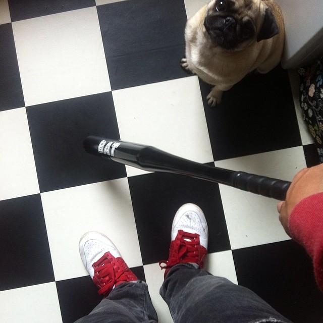baseball mops